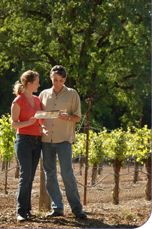 Couple taking a free vineyard tour